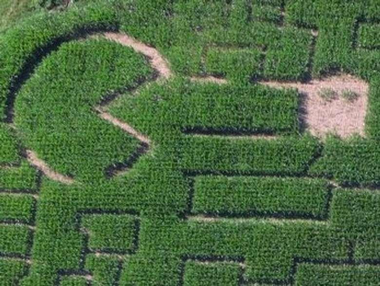 Partial 2020 Pac Man Maze