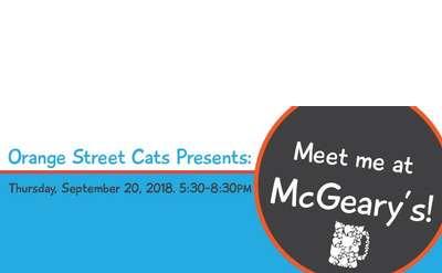 Orange Street Cats Fundraiser