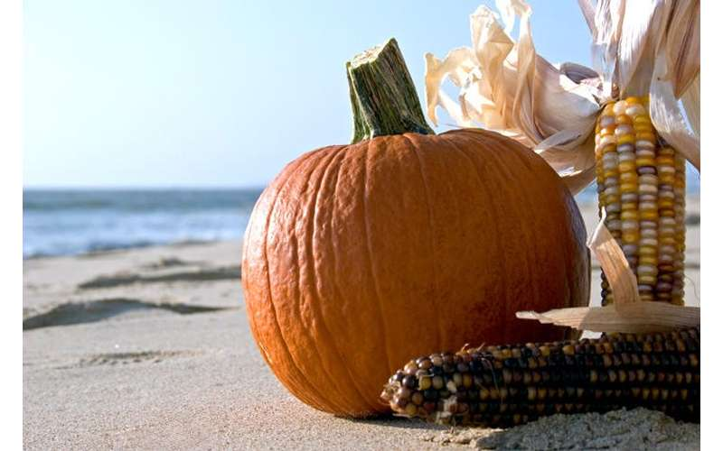 pumpkin on beach with Indian corn