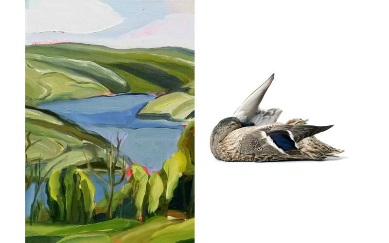 Landscape Painting next to a painting of a dead bird