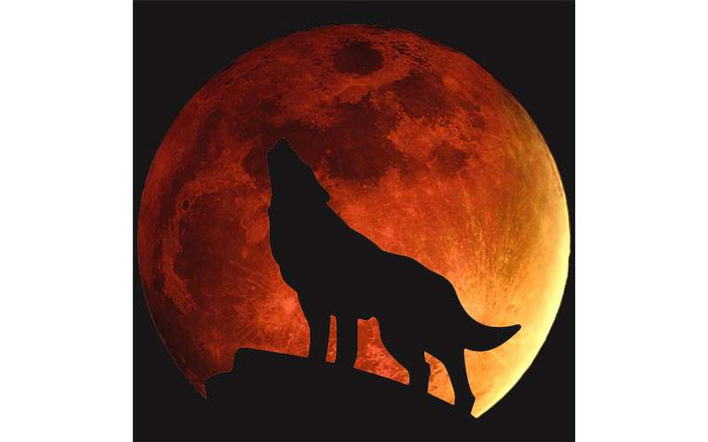 Super Blood Wolf Moon Eclipse Party Sunday Jan 20 2019 Until