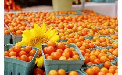 Photo of cherry tomatoes