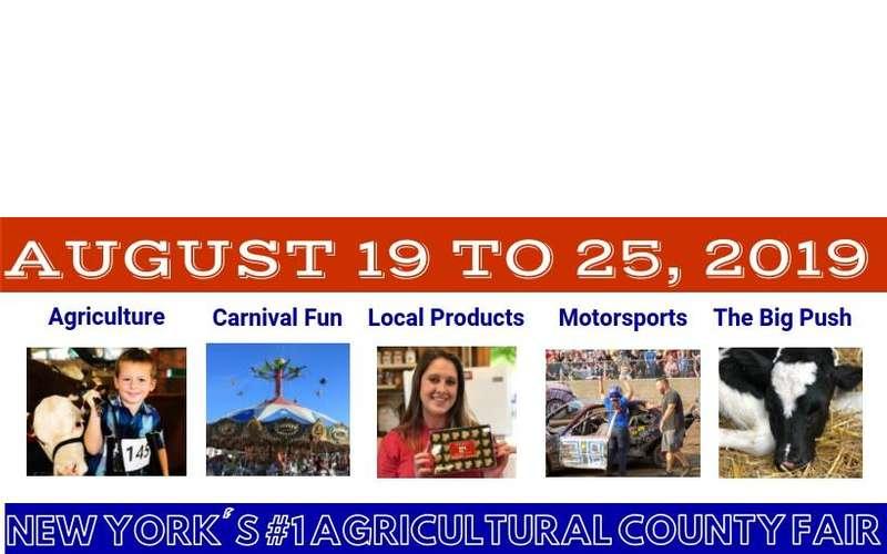 2019 washington county fair image