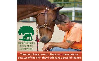 TRF Second Chances Program - Saving Horses. Saving Lives.