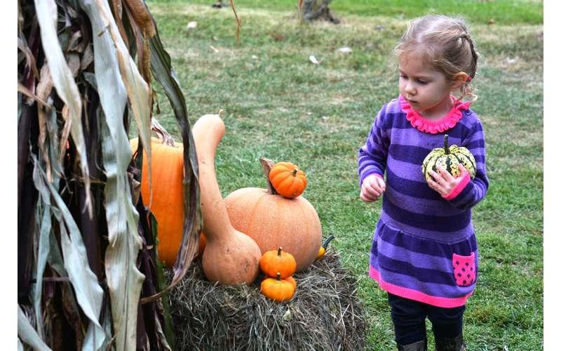 Child Next to Pumpkin Photo
