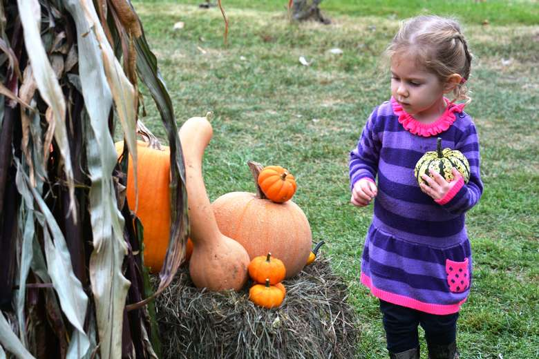 Child Next to Pumpkin Photo