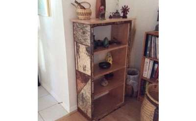 Adirondack Rustic Bookcase Photo