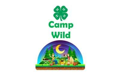 Camp Wild Poster