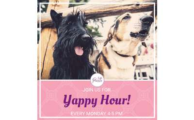 Dogs love YAPPY HOUR at Palette Cafe!