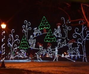 holiday lights in the park