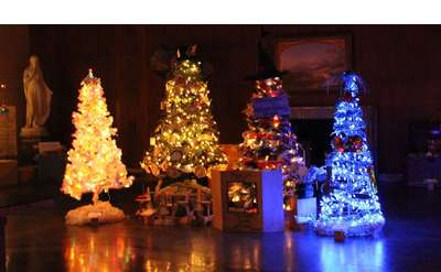 colorful holiday trees