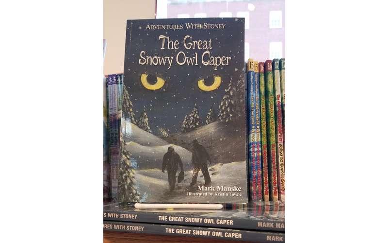 snowy owl book