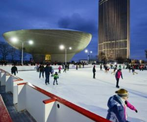 ice skaters in albany