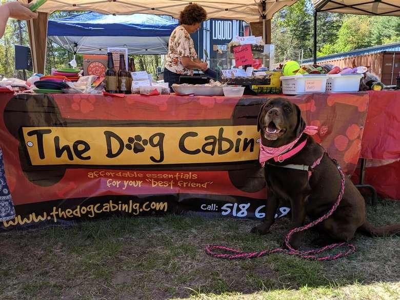 The Dog Cabin
