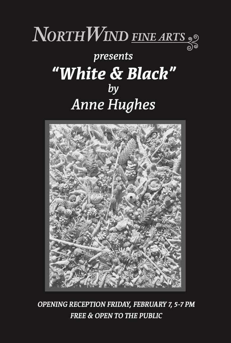 Anne Hughes's White & Black