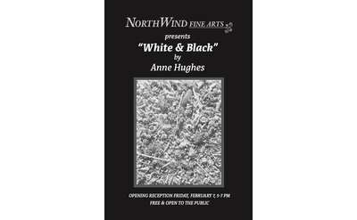 Anne Hughes's White & Black