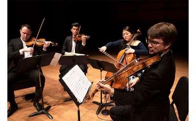 a string quartet performing
