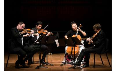 string quartet performing