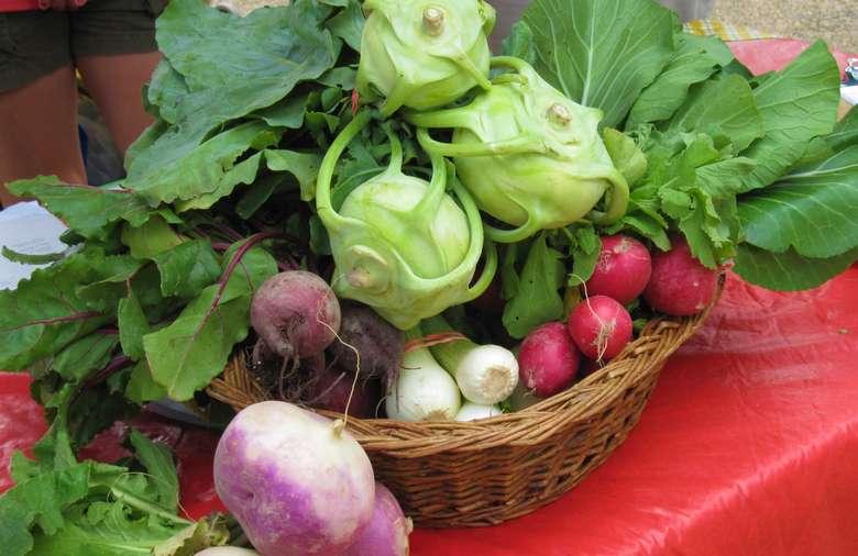 Spring basket of Market veggies
