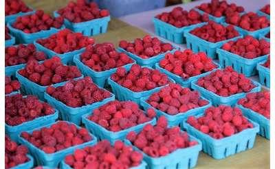 Raspberries at the Market