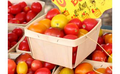 Cherry tomatoes at the Market