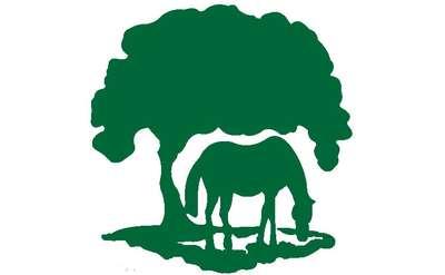 Thoroughbred Retirement Foundation Logo