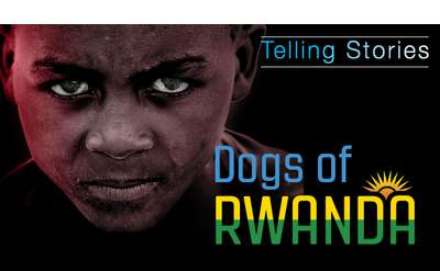 Dogs of Rwanda
