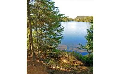 Arbutus Lake, Newcomb, New York