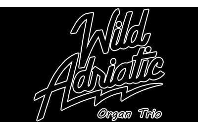 Wild Adriatic Organ Trio