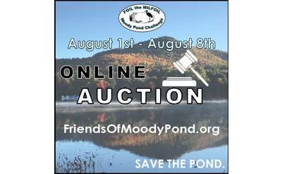 The Moody Pond Challenge: Online Auction