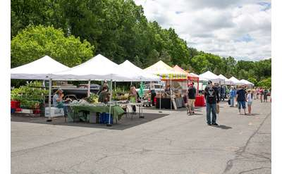 Saratoga Farmers' Market, photo by Pattie Garrett
