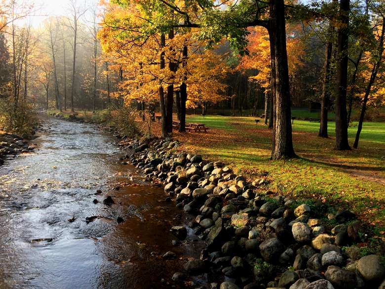 Fall creek at Spa Park by Allison Schweizer.