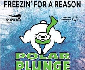 polar plunge poster