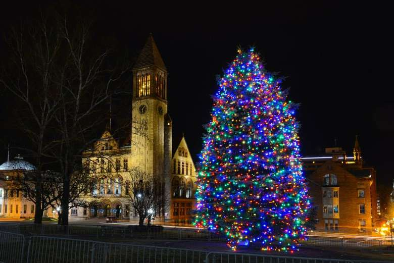 lit holiday tree in front of albany city hall