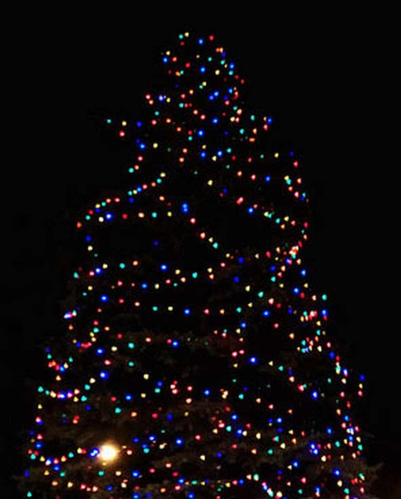 a large lit Christmas tree