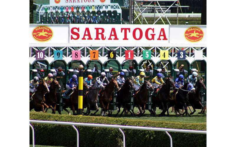 race horses lined up at the starting gate at saratoga