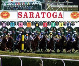 horse race gates