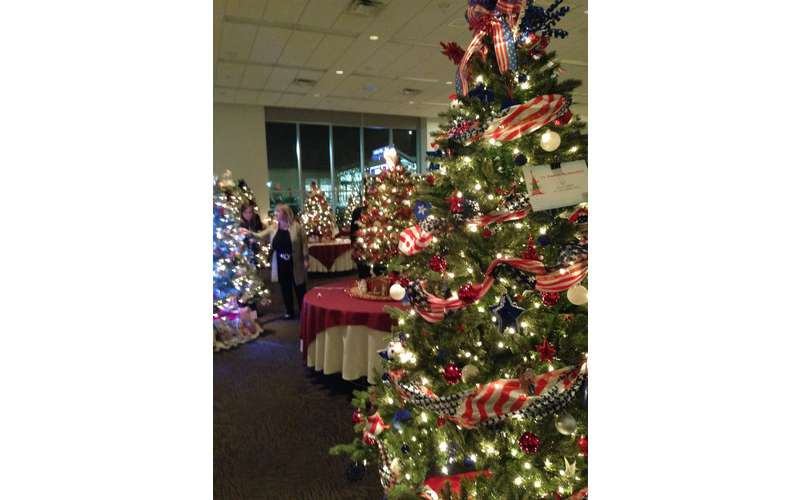 Saratoga Festival of Trees: Preview Reception (1)