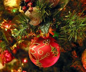 ornament on a holiday tree