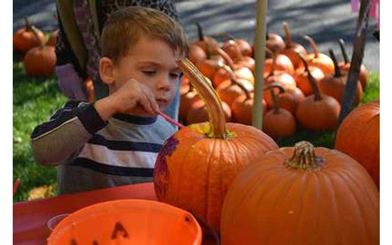kid carving pumpkin