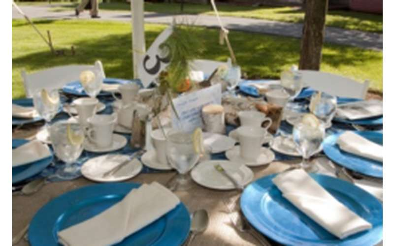 blue dinner plates and white napkins on a round table