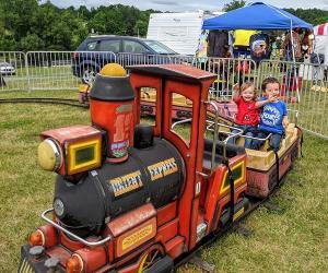 pinkish purple fireworks