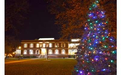 colorful christmas tree near building
