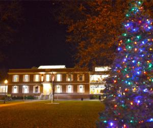 crandall library at night with a holiday tree in front