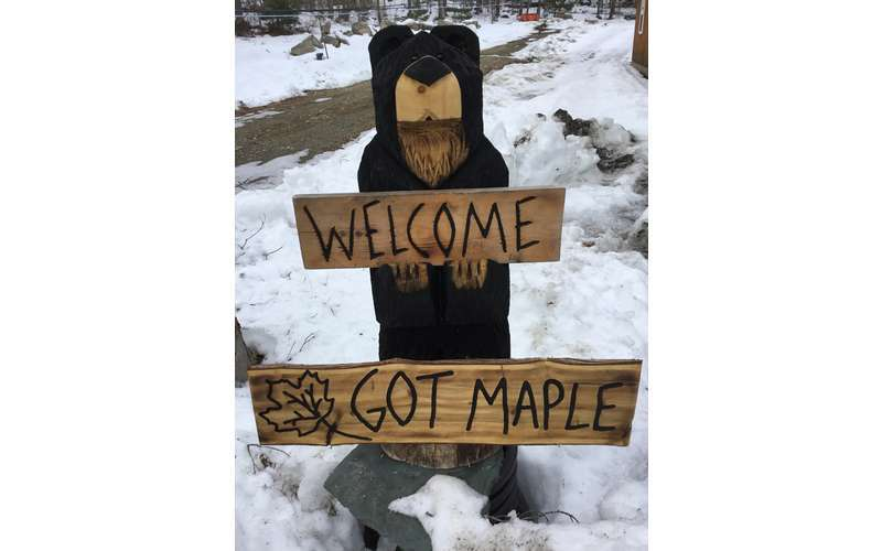 wooden bear holding Welcome Got Maple sign