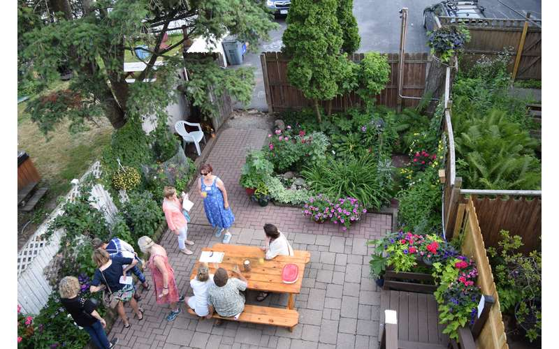 aerial view of people in backyard