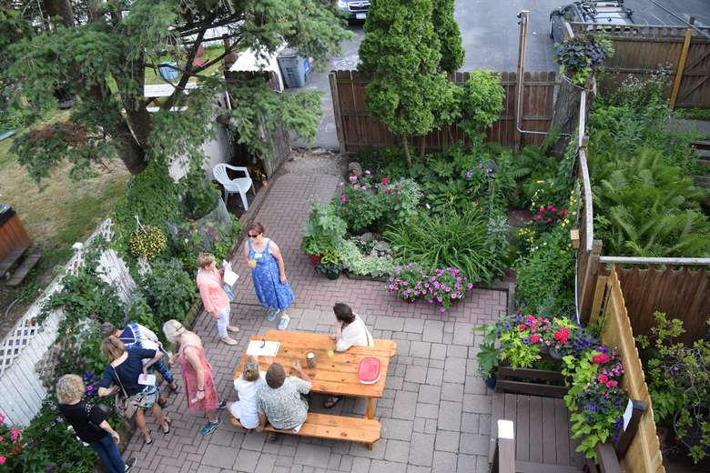 aerial view of people in backyard