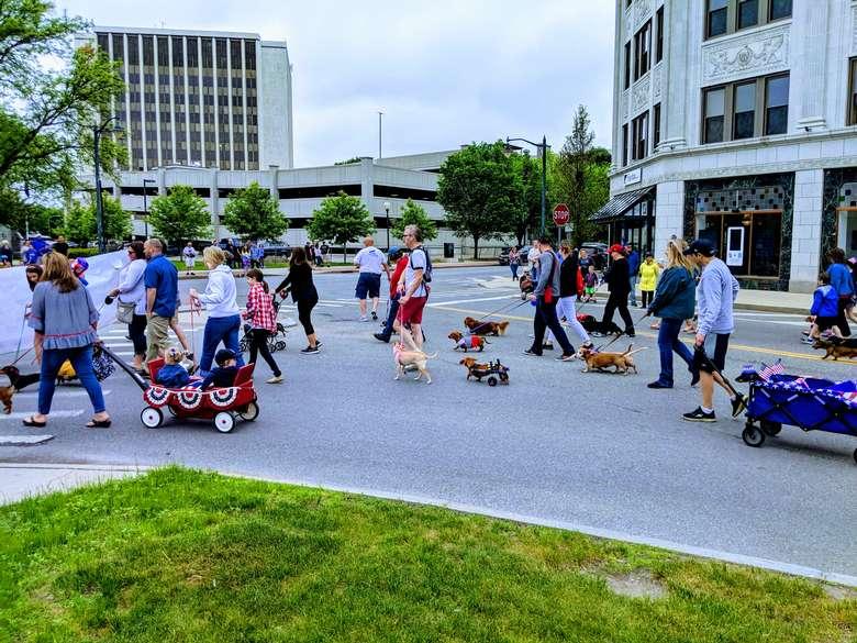 wiener walk in parade