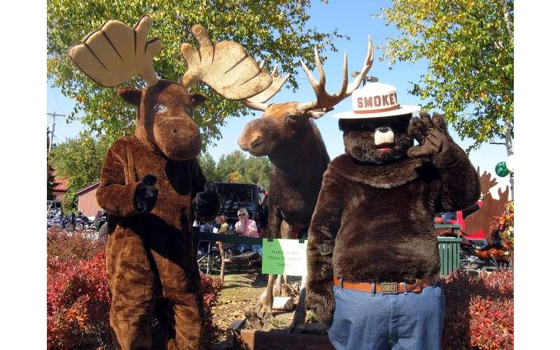 moose and smokey the bear