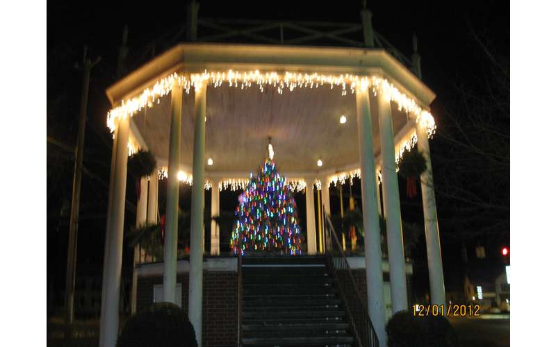 a christmas tree with lights under an outdoor structure